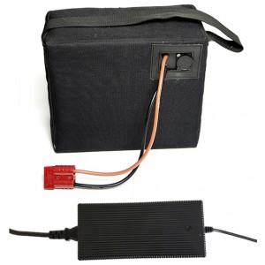 Bateria de Lítio (LiFePO4) 24V 32Ah + carregador